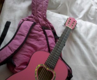 Pinke Gitarrentasche Thumb